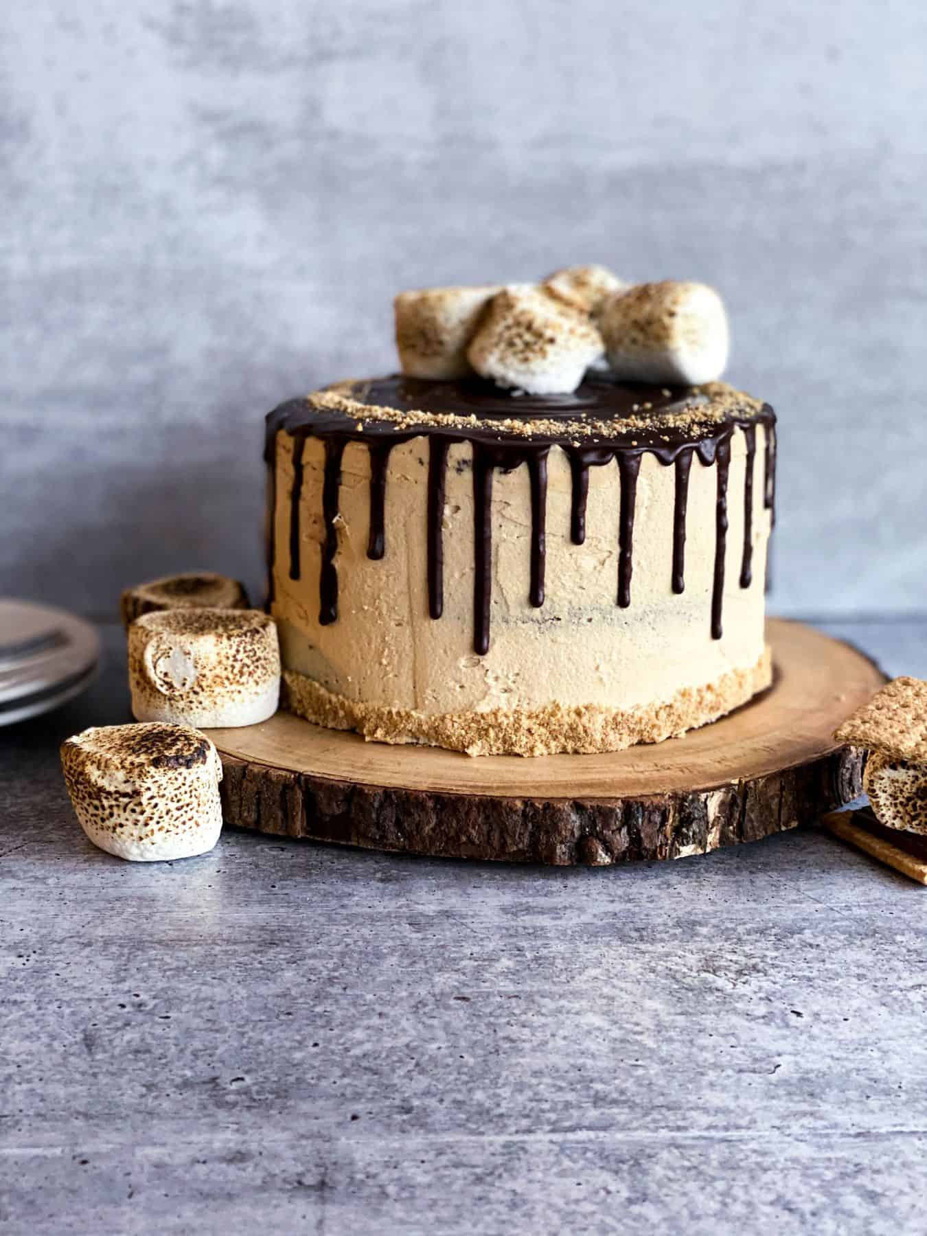 s'mores peanut butter cake on a cake stand far away with toasted marshmallows on the side