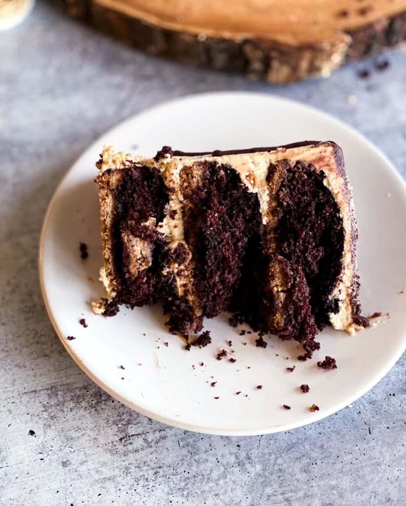 slice of s;mores peanut butter cake