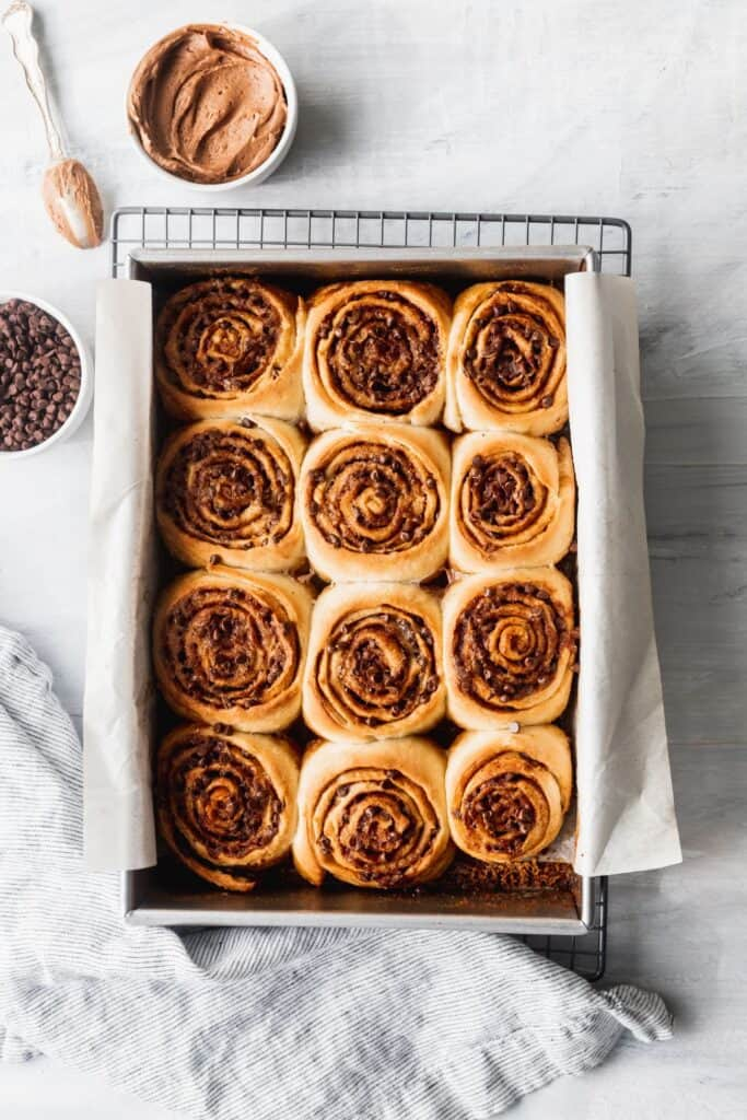 Chocolate chip cinnamon rolls in pan with no icing.