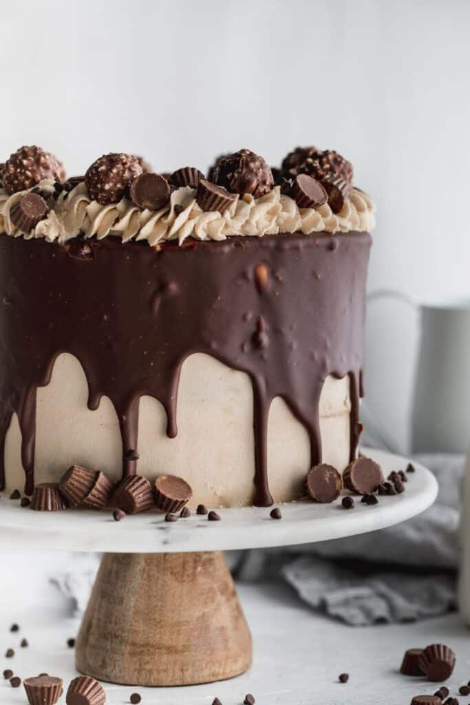 Nutella and Peanut butter cake on a cake stand.