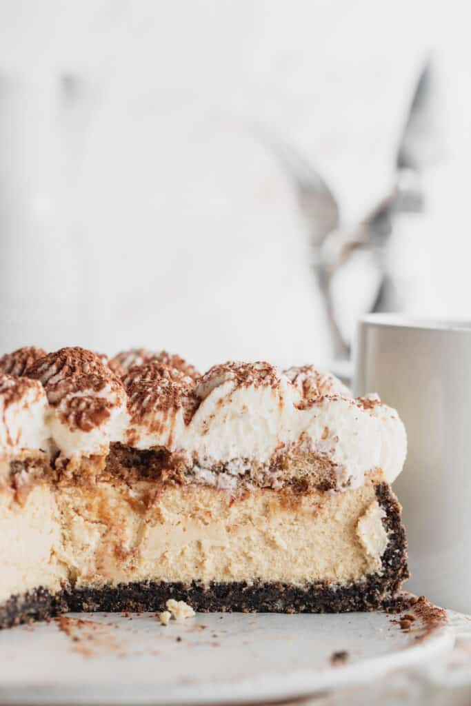 Side view of cheesecake.
