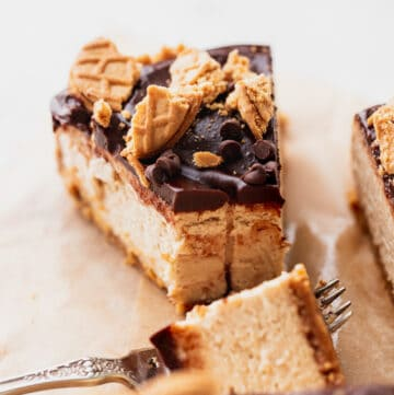 Close up of peanut butter cheesecake with a bite missing.