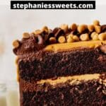 Pinterest pin for butterscotch chocolate cake